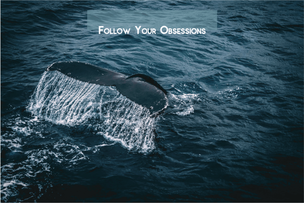Whale, obsession, writing, How to write authentically, the poetry salon, Tresha Haefner